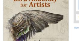 Bird Anatomy for Artists - Natalia Balo PDF Download